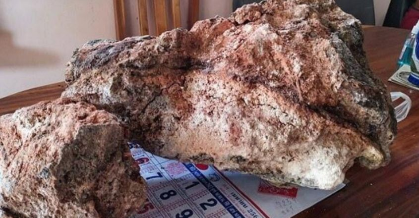 Thai Fisherman Finds 30 Kilos Of Whale Vomit Worth Almost Rs 10 Crore