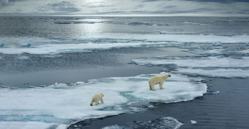 Melting ice could awaken deadly ancient viruses, warn scientists