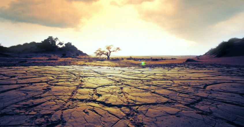 Extreme 14th Century Droughts May Provide Insight Into Our Climate Change Crisis