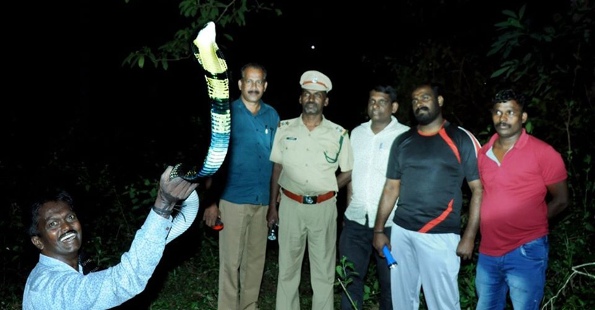 Vava Suresh Rescuing King Cobra