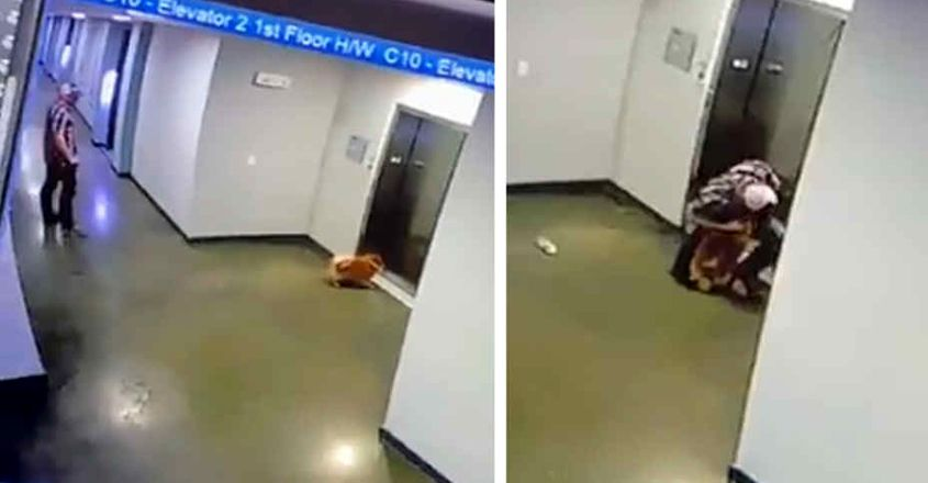 Man Rushes To Save Dog After Leash Gets Stuck In Elevator