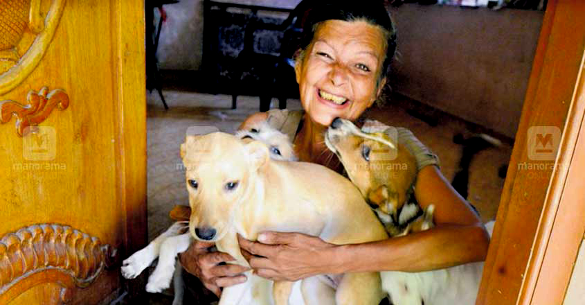 Thai woman with Stray Dogs