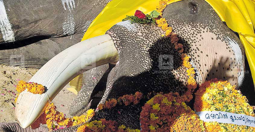 Guruvayur temple elephant Gajaratnam Padmanabhan dies