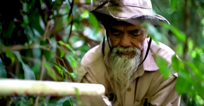 Having Planted 11,000 Trees, Indonesian Eco-Warrior Has Turned Barren Hills Green After 24 Years Of Effort