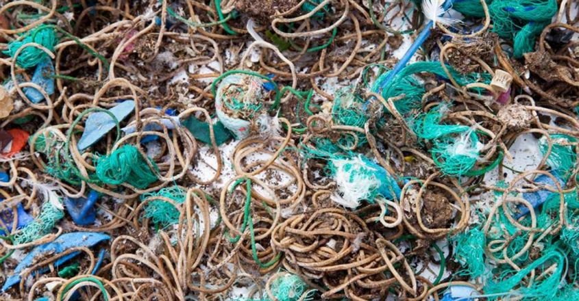 Remote Island Is Littered With Rubber Bands