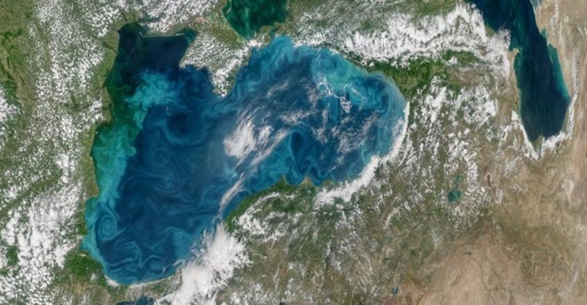 Dead Zones' in The World's Oceans