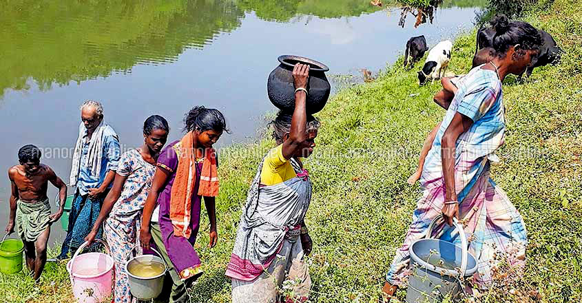 wayanad-water-scarcity