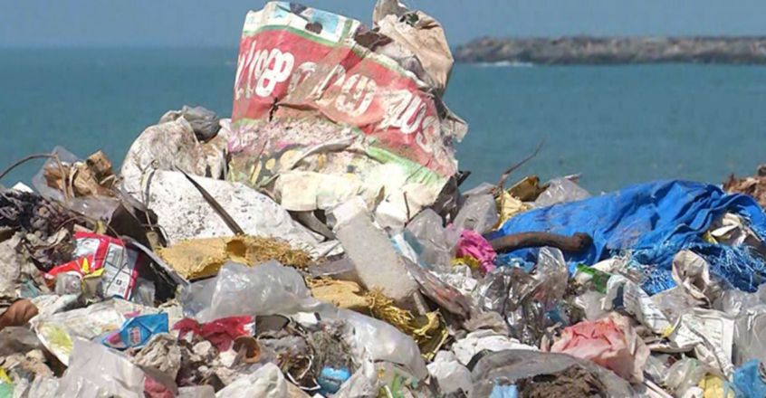 Environmental organisation conducts beach cleaning
