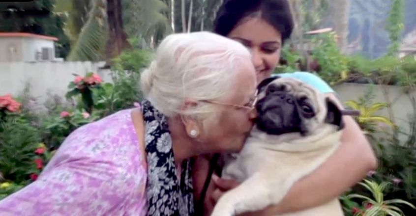 unique relationship between grandmother and the pet dog Pluto Baby