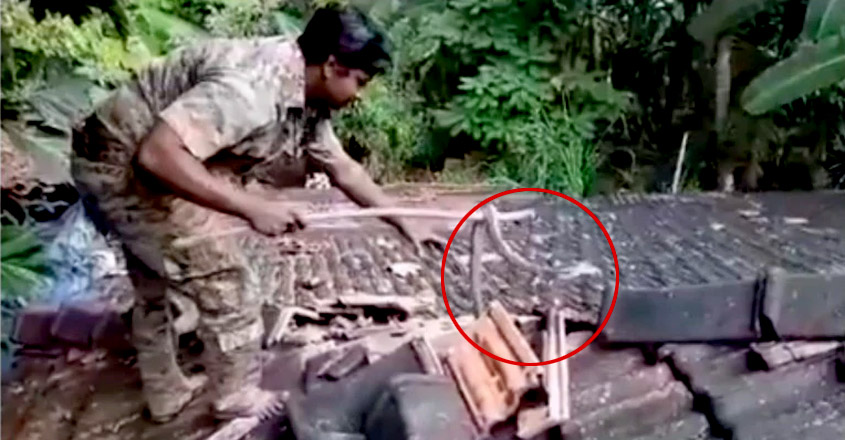 Cobra rescued from rooftop by forest official in Goa