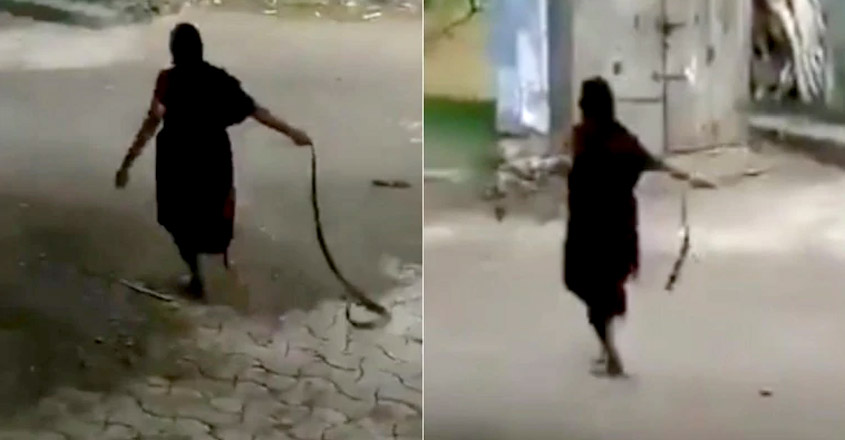 Elderly woman dragging cobra by tail and throwing it goes viral