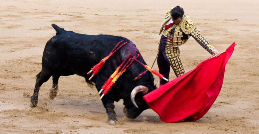 Bull dies in agony as Spain holds its first bullfights after coronavirus lockdown