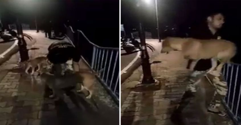 Man throws dog into lake in Bhopal, then smiles