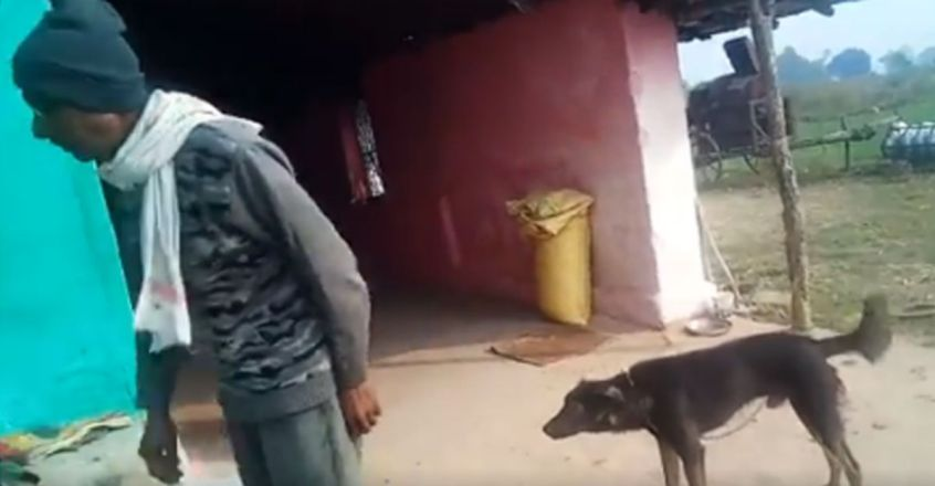 Frustrated With Family, Man Gives Half His Property To His Pet Dog In Will