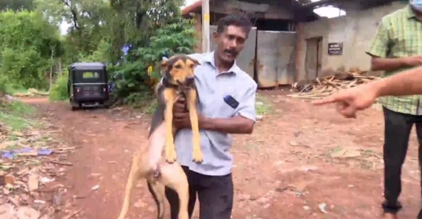 | Lost dog reunited with owner Ananthan