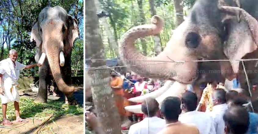 Tusker Brahmadathan came to see his beloved mahout for last time leaving spectators in tears
