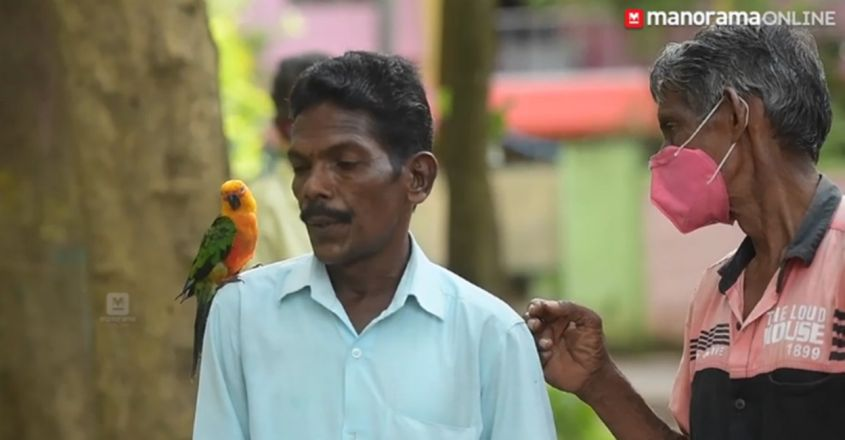 Pet parrot rides on scooter with owner