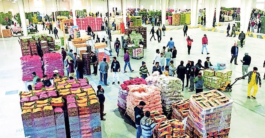 veg-market-al-sailiya