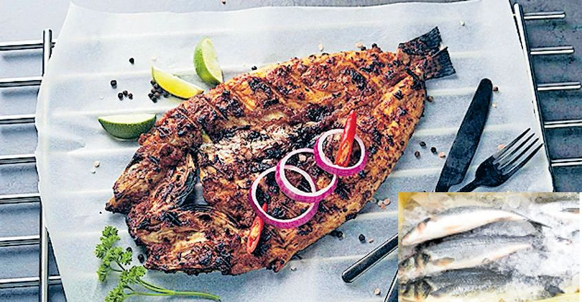 seabass-grilled-fish-3