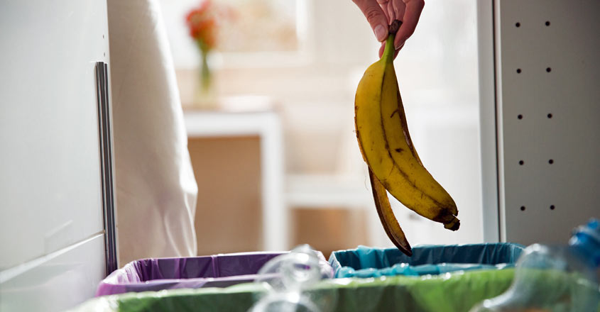 banana-peels-use-in-house