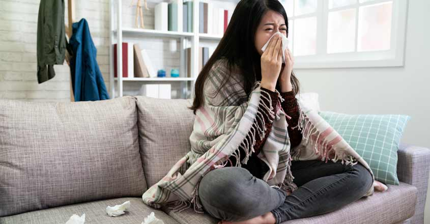 allergy-in-home