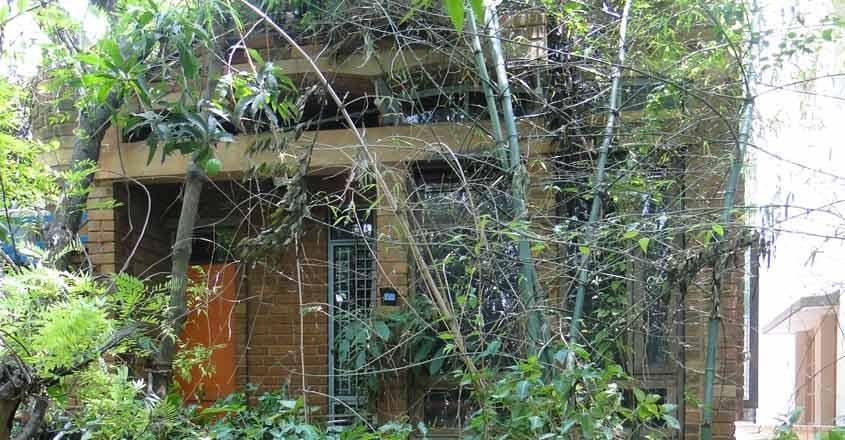 eco-friedly-house-bengaluru-view