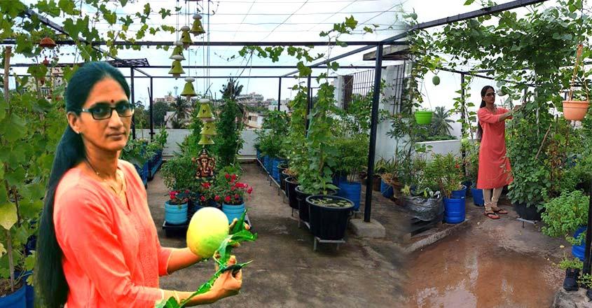 usha-vegetable-home-garden