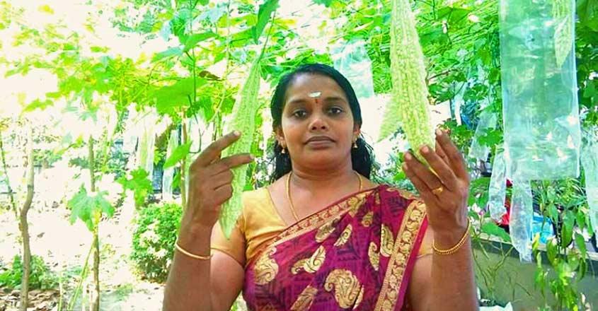 vijayakala-house-farming