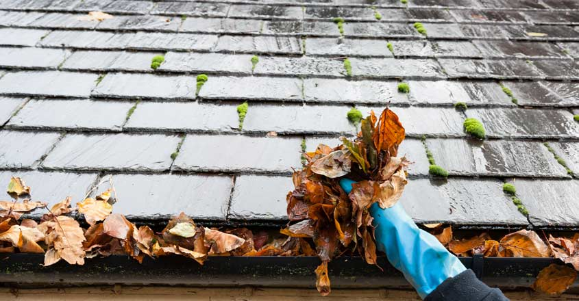 roof-cleaning-gutter