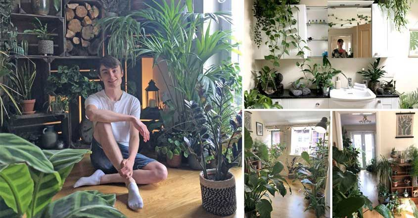 mini-jungle-garden-home