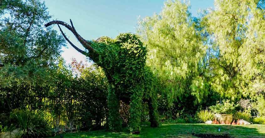 selena-gomez-home-garden