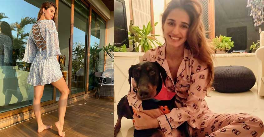 disha-patani-home-pet