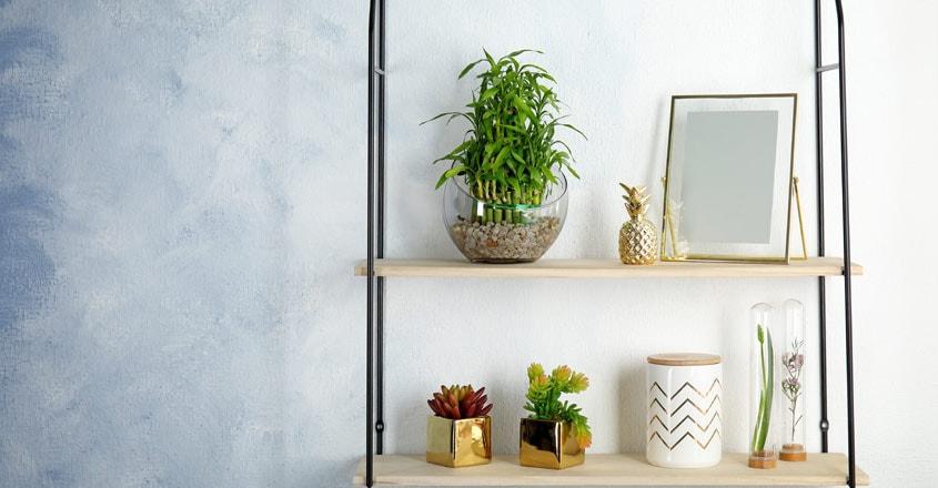 lucky-bamboo-interior