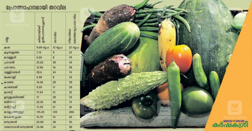 vegetable-support-price