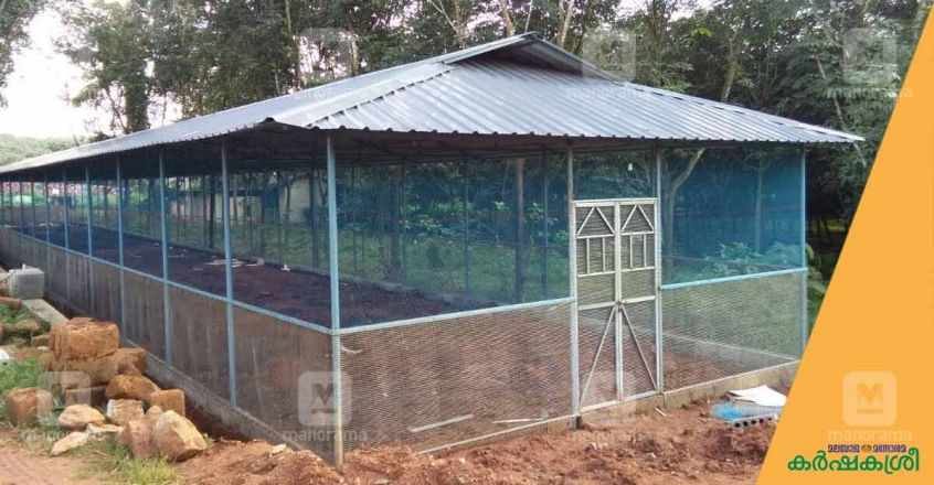 broiler-farm-shed-outside-view