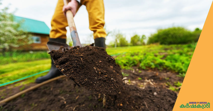 soil-solerisation