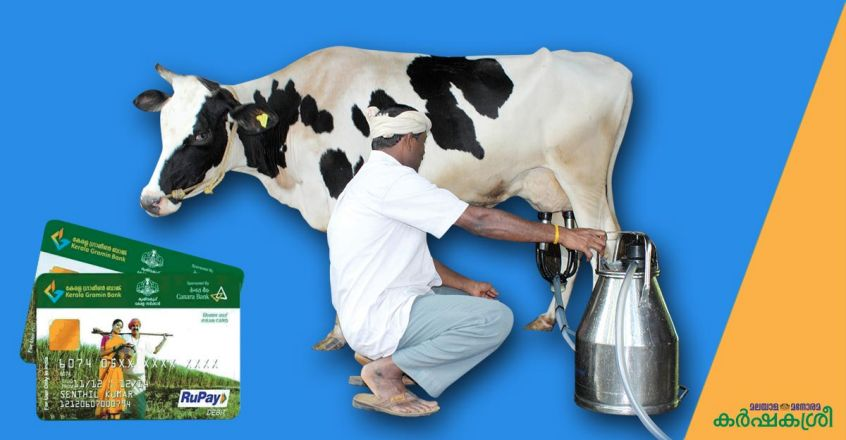 kcc-for-dairy-farmers