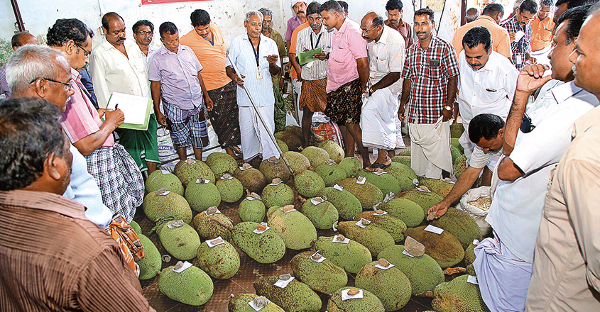 koothattukulam-market