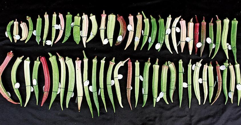 National-Bureau-of-Plant-Genetic-Resources5