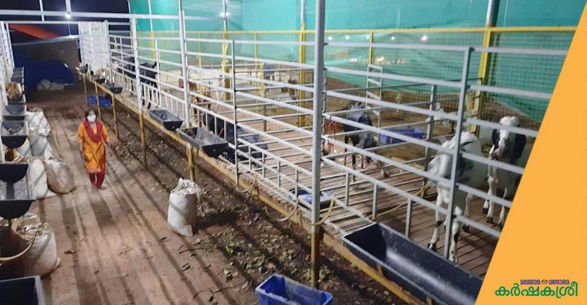 thanal-integrated-farm-goat-shed-1
