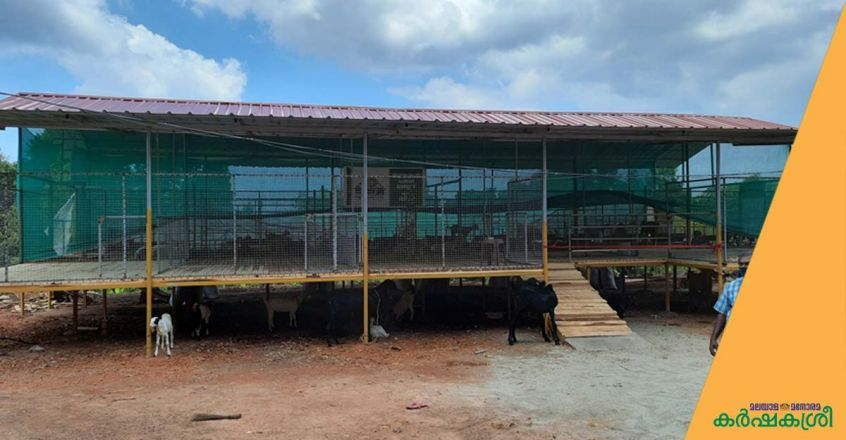 thanal-integrated-farm-goat-shed