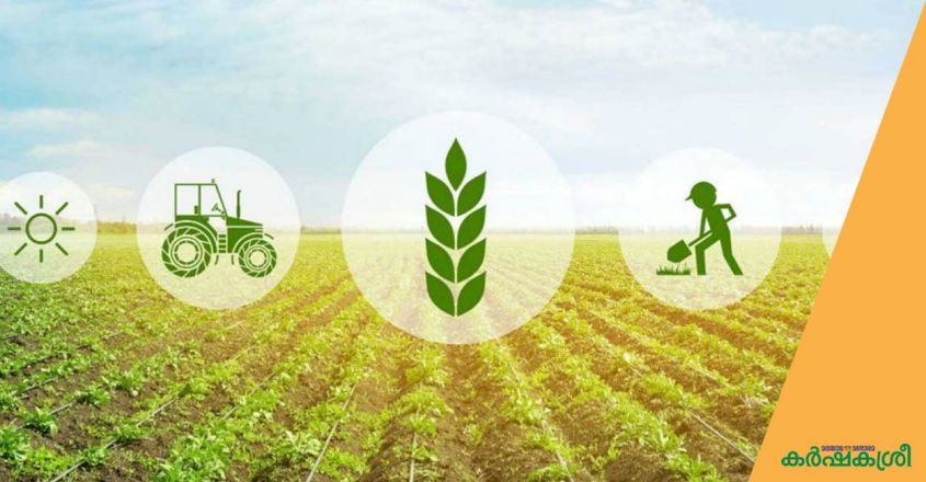 agriculture-loan
