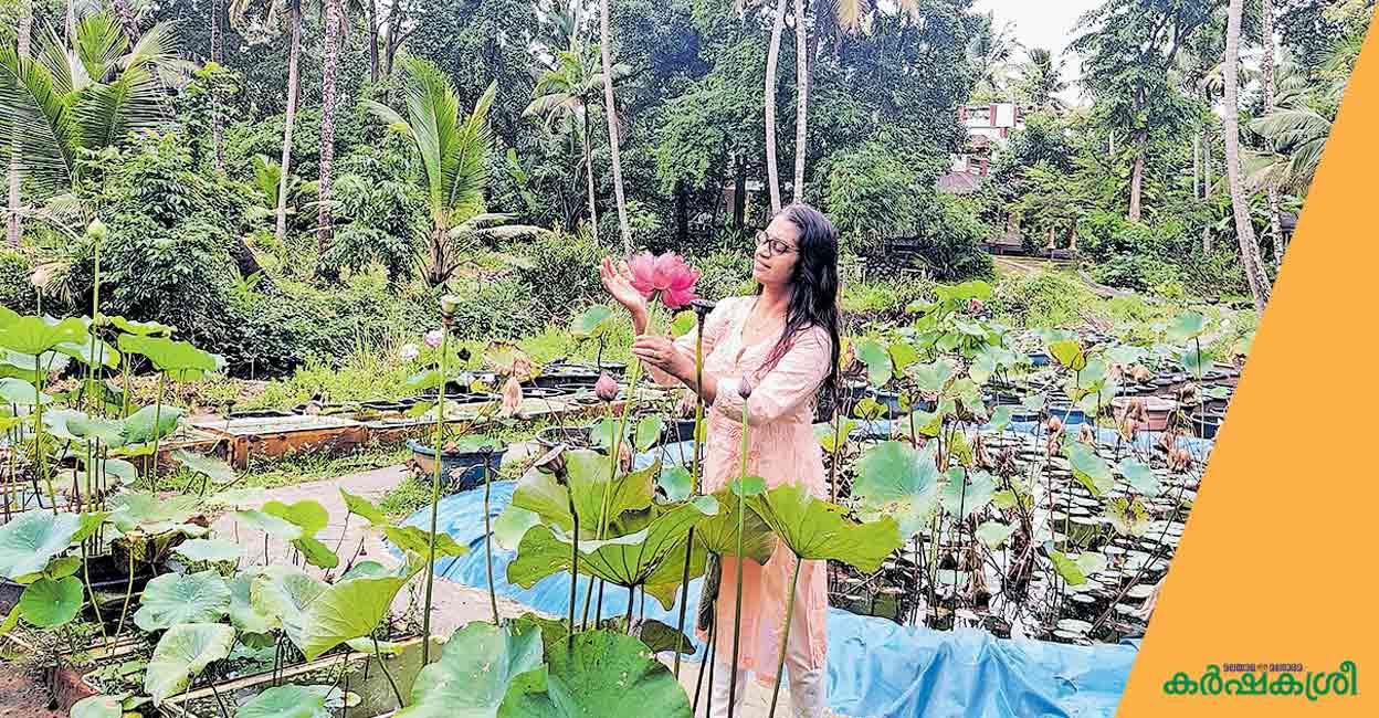 80ൽപ്പരം താമരയിനങ്ങൾ, താമരപ്പൂങ്കാവനമായി പ്രയാഗവീട്