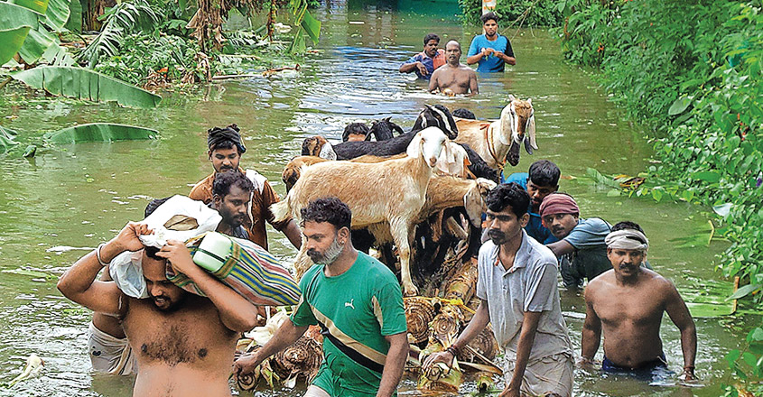 People-and-pet-animal-in--flood-