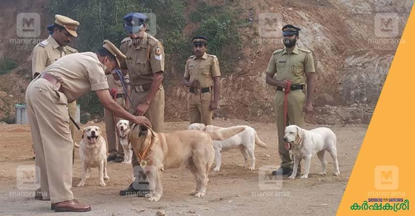 police-dog-5