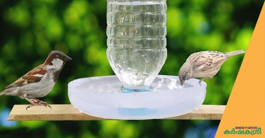 water-feeder