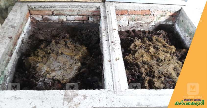 vermi-compost-2