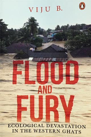 flood-and-fury-book