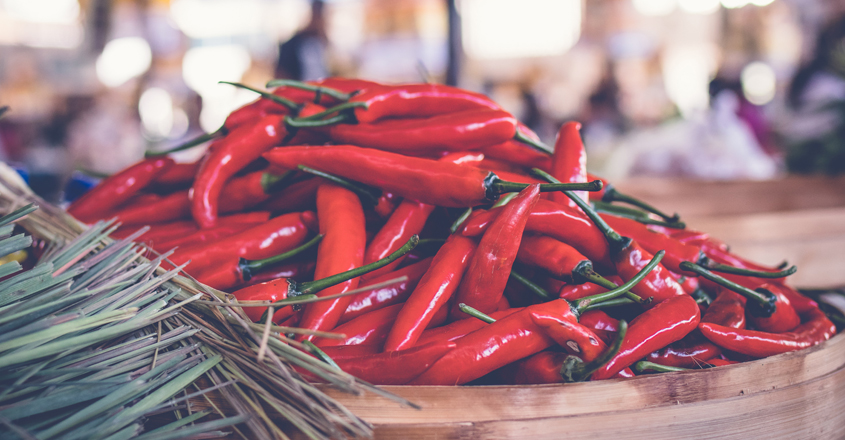 red-chilli-image