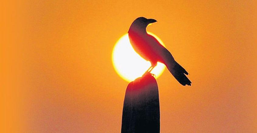 വടക്കോറ കോലായിലെ അണയാദീപങ്ങൾ(കഥ)